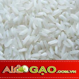 ALOGAO-504-CU-copy