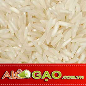 ALOGAO-64-copy
