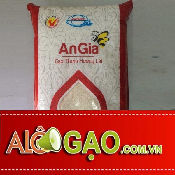 ALOGAO-HUONG-LAI-copy
