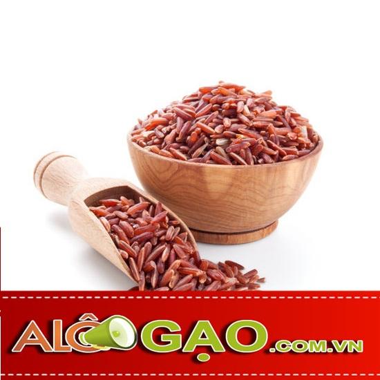 ALOGAO-HUYET-RONG-copy