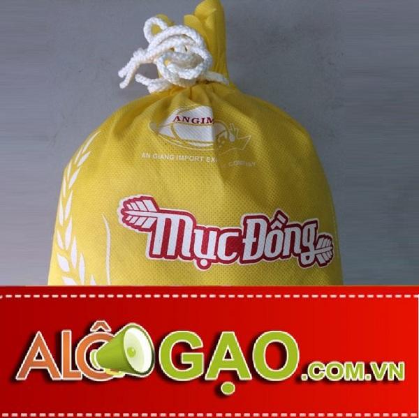 ALOGAO-MUCDONG-copy