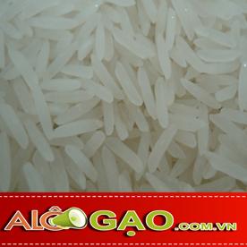 ALOGAO-ST-20