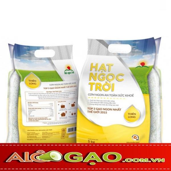 gao-hat-ngoc-troi-thien-long