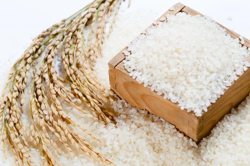 Kết quả hình ảnh cho gạo japonica